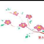 日本風の小さい花